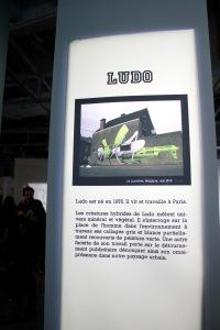 2013-03-06 (118) Ludo